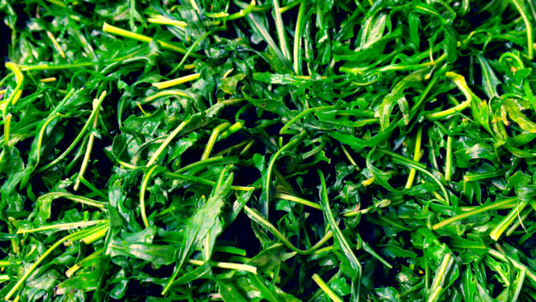Verdura… cosa vuoi che sia?!?!? Cambiamo punto di vista