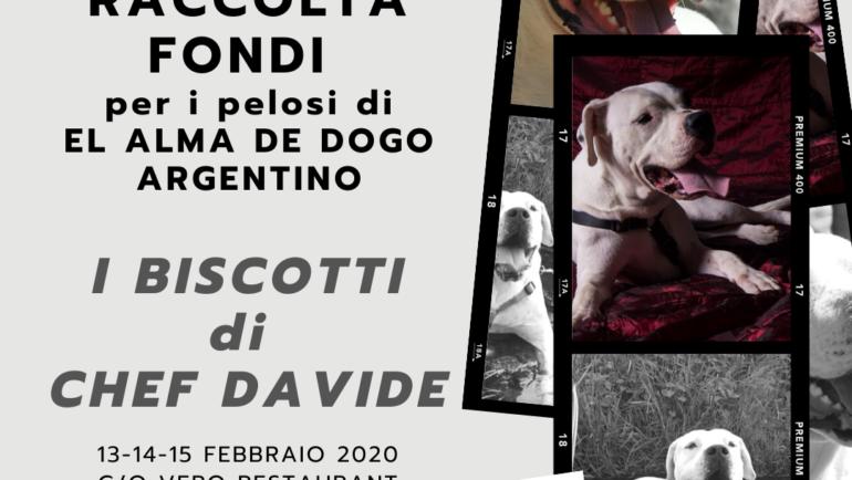 """RACCOLTA FONDI PER """"EL ALMA DE DOGO ARGENTINO"""": I BISCOTTI DI CHEF DAVIDE PER UNA BUONA CAUSA"""